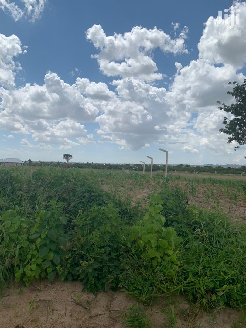 Viwanja Mkonze Dodoma Pembezoni Mwa Barabara