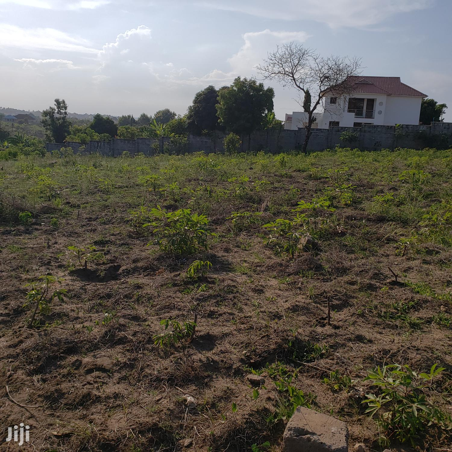 Two Plots Available for Sale in One Area