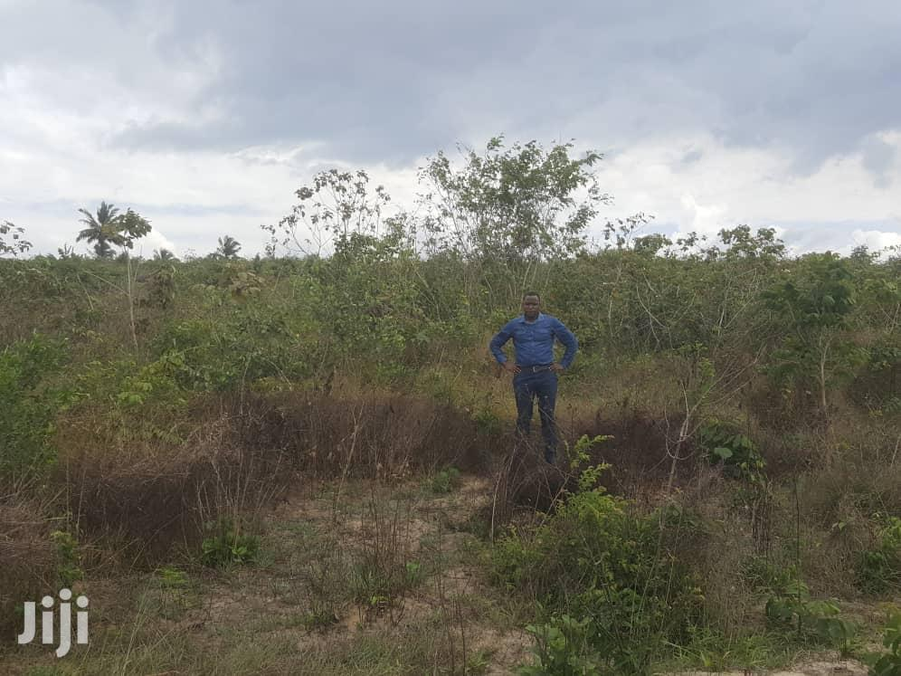 Plot for Sale | Land & Plots For Sale for sale in Chanika, Ilala, Tanzania