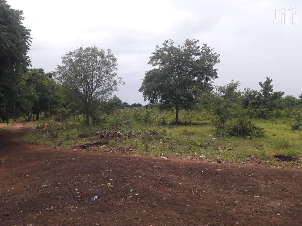 Eneo Zuri Kwa Uwekezaji Linauzwa | Land & Plots For Sale for sale in Morogoro Rural, Morogoro Region, Tanzania