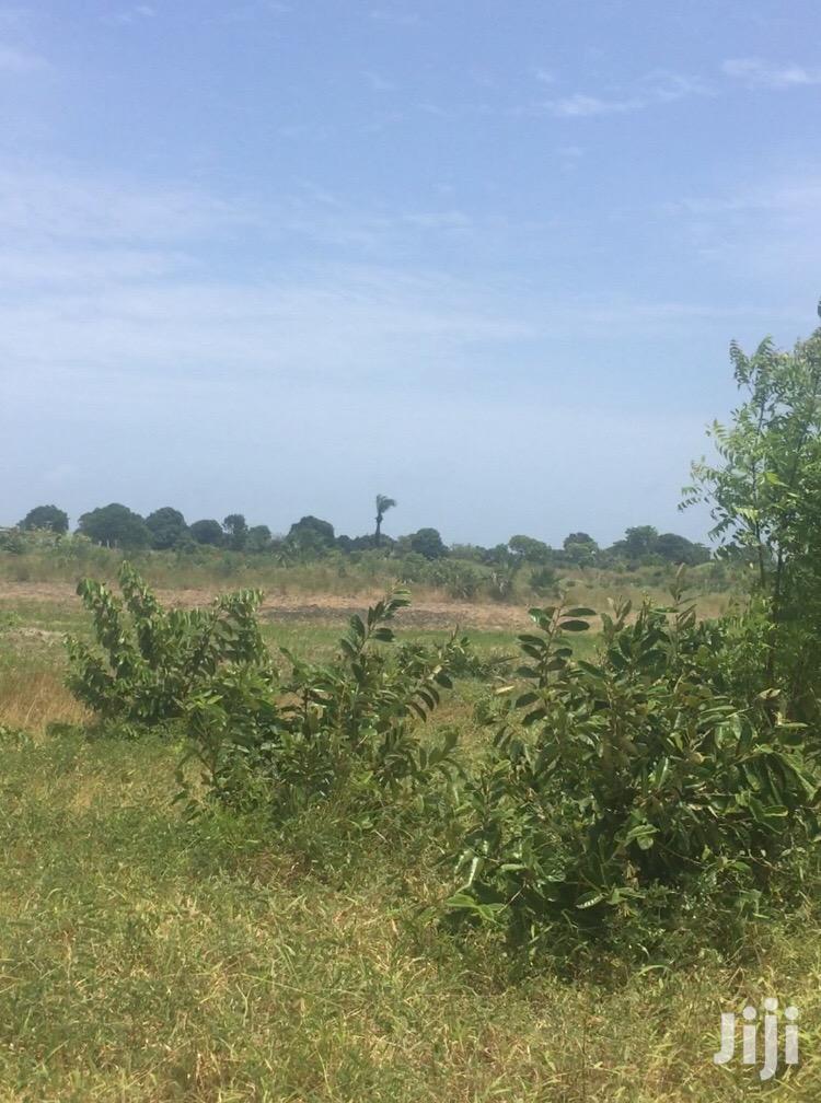 Land for Sale at Kigamboni Dege/Viwanja Vinauzwa Kigamboni   Land & Plots For Sale for sale in Temeke, Dar es Salaam, Tanzania