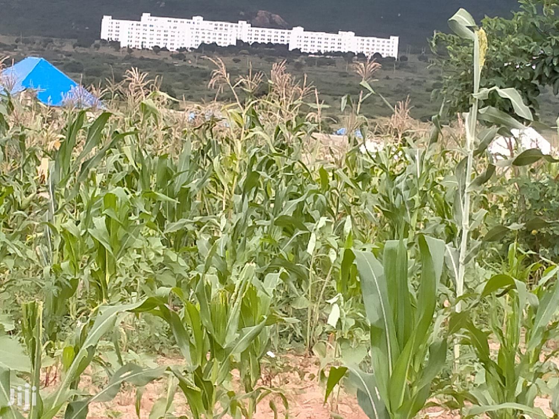Viwanja Dodoma Mjini   Land & Plots For Sale for sale in Dodoma Rural, Dodoma Region, Tanzania