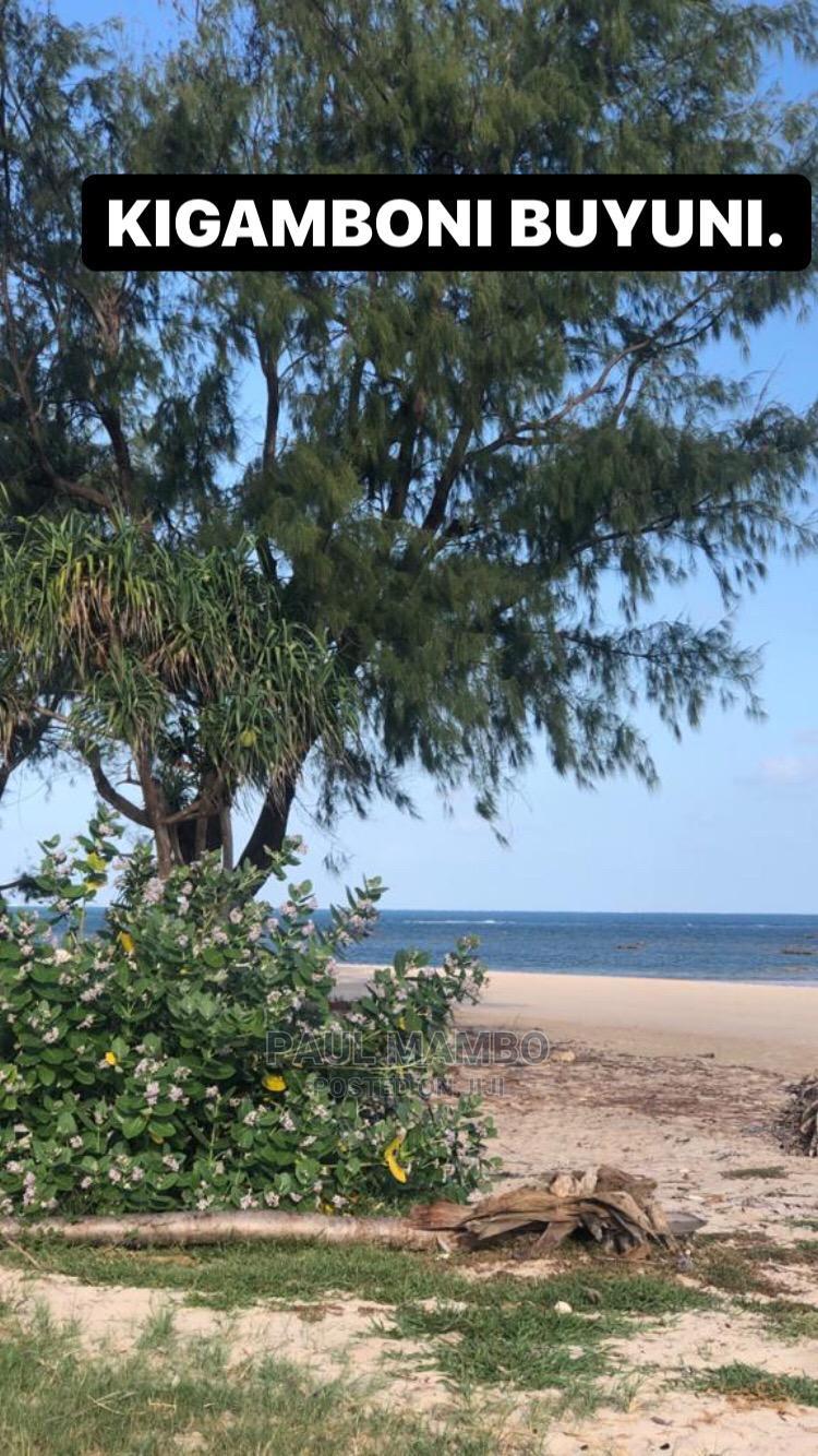 Viwanja Kigamboni Buyuni Beach Plots