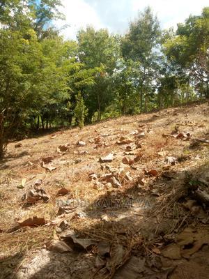 Kiwanja Kizuri Kinauzwa | Land & Plots for Rent for sale in Kinondoni, Kinondoni
