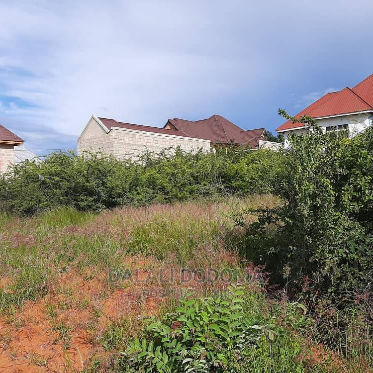 Plot for Sale   Land & Plots For Sale for sale in Dodoma Rural, Dodoma Region, Tanzania